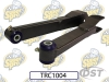 08-09 G8 Rear Trailing Arms SuperPro